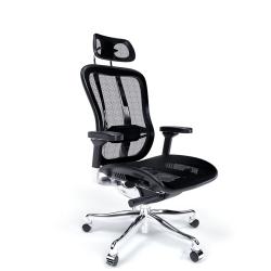 Solos Premium Ergonomic Chair